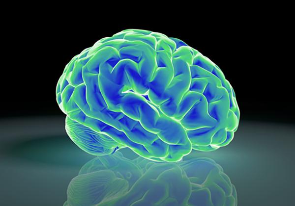 通販脳を身につける